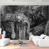 Fototapete Leopard Afrika Vlies Wand Tapete Wohnzimmer Schlafzimmer Büro  Flur Dekoration Wandbilder XXL Moderne Wanddeko   100% MADE IN GERMANY    Runa ...