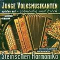 Junge Volksmusikanten spielen auf der Steirischen Harmonika (Instrumental Folge 1)
