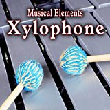 Single Xylophone Note Played