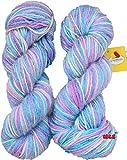 #10: Vardhman Multi Multi Blue Berry Hand knitting wool / Art Craft soft fingering crochet hook yarn, needle Acrylic knitting yarn thread dyed 200 gm
