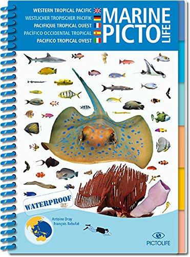 Pictolife Pacifique Tropical Ouest