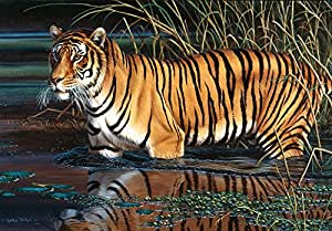 Schmidt Jigsaw Puzzle Tiger (1000 Pieces)