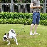 Peteast Multifunktions-Hundeleine, reflektierende 8.3ft lange Hundetraining und Walking Leine für kleine, mittlere und große Hunde -