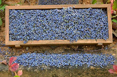 TooGet Natürliche Lavendelblüten Getrocknete Lavendelknospen in Erstklassiger Qualität, Ideal Für DIY Blumenhandwerk, Beutel, Seife, Bäder. Frischer Duft - 115g (Trockner Blätter, Lavendel)