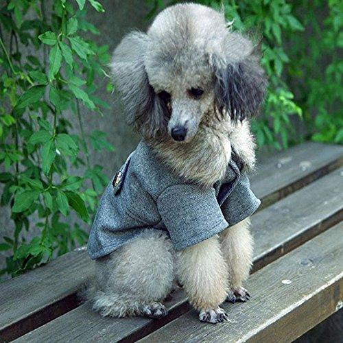 Darpy (TM) Haustier Kleidung Hund Kleidung Frühling Kostüme für Hunde Coats Billig Warm Herbst Winter Puppy Mops Bulldogge