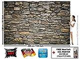 Murale Grey Stonewal - mur decoration papier peint de Revêtement mural de Pierre grès Revêtement mural de 1000 Pierre 3d | murale photo mur deco chez GREAT ART (336 x 238 cm)
