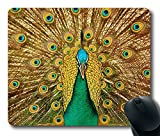 Scorpio-Leo Beautiful Peacock Mouse Pad Oblong Shaped Mouse - Best Reviews Guide