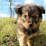 Lovely Puppies 2018 Calendar: Adorable Puppies Baby Dog 2018 Monthly Calendar