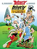 Asterix Y Galiad
