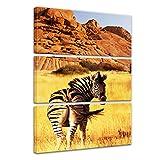 Bilderdepot24 Immagine su telaio a cunei Zebra di montagna 80x120 cm 3tlg - Già montato sul telaio, stampa su tela di cotone 100%, Stampa artistica intelaiata e pronta da appendere