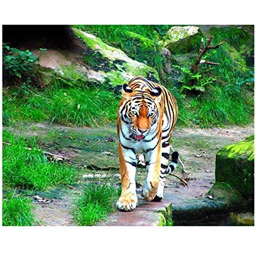 HYFBH Gerahmte Leinwand Malerei Green Grassland Wild Animal Tiger Poster und Drucke Wandkunst Bilder Wohnzimmer Decor-60x70cm Mit Rahmen