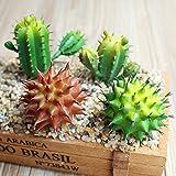Calcifer® 4pcs Cactus artificiel plantes Succulents pour Home Office Jardin fête de mariage Décor