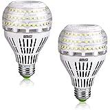 Sansi Ledlampen, E27, koudwit, 27 W, vervangt 250 W Edison-gloeilamp), 4000 lm, superheldere ledlamp voor keuken, werkplaats,