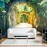 decomonkey | Fototapete Wald 3D 400x280 cm XXL | Tapete | Wandbild | Bild | Fototapete | Tapeten | Wandtapete | Wanddeko | Wandtapeten | Garten Steine Pflanzen grün