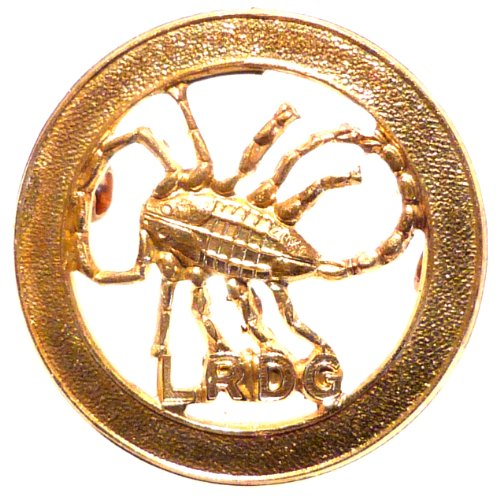 lrdg-long-range-desert-group-cap-badge