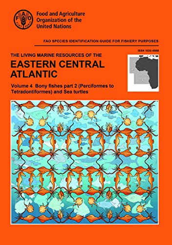 The Living Marine Resources of the Eastern Central Atlantic: (Perciformes to Tetradontiformes) and Sea Turtles Part 2: Bony Fishes: 4 (FAO Species Identification Guide for Fishery Purposes)