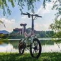 Reichhaltige Bit® RT 730Electric Bike eBike Klapprad 250W * 48V 8Ah LG Akku 7Speed 7Gängen ausgestattet Handy-Ladegerät und Halter Dual Mechanische Bremse, 50,8cm Rad City Pendeln Bike Shimano Umwerfer Lange dauert, New Fashion Malerei grau