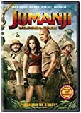#6: Jumanji: Welcome to the Jungle