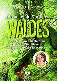 Die heilende Kraft des Waldes: Von Blättern und Flechten bis zu Vitalpilzen (Amazon.de)