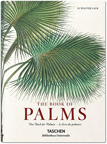 martius-the-book-of-palms-by-h-walter-lack-25-feb-2015-hardcover