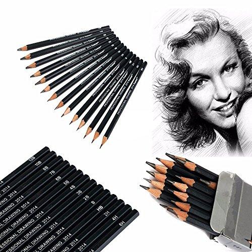 NEITU® 14 Stück Graphitstifte Zeichenkohle Bleistifte zum Zeichnen Skizzieren Schwarz Set