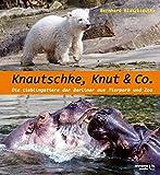 Knautschke, Knut & Co.: Die Lieblingstiere der Berliner aus Tierpark und Zoo