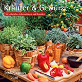 Kräuter & Gewürze 2020 - Broschürenkalender - Wandkalender - mit herausnehmbarem Poster und Rezepten - Format 30 x 30 cm: Mit nützlichen Informationen und Rezepten -