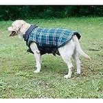 IREENUO Dog Reversible Plaid Coat Autumn Winter Warm Cozy Waistcoat British Style Dog Padded Jacket for Small Medium… 12