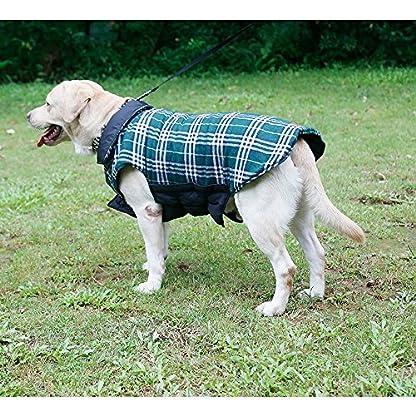 IREENUO Dog Reversible Plaid Coat Autumn Winter Warm Cozy Waistcoat British Style Dog Padded Jacket for Small Medium… 5