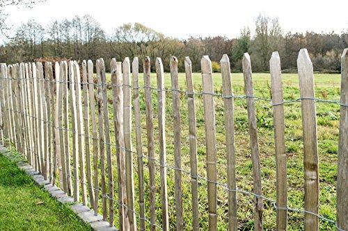 STILTREU Staketenzäune Staketenzaun Kastanie Höhen 50 cm – 200 cm, 5 Meter Rolle, 3 Versch. Lattenabstände