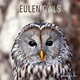 Eulen 2018 - Owls - Broschürenkalender (30 x 60 geöffnet) - Tierkalender - Wandplaner - ALPHA EDITION