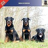 BEAUCERON 2019 - CALENDRIER AFFIXE (BERGER DE BEAUCE)