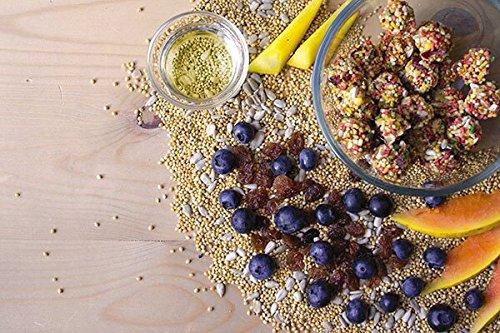 Lafeber 's Gourmet Sunny Orchard nutri-Berries für Papageien 10oz Tasche -