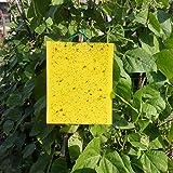 SUNREEK 30 Paquetes de 25 cm * 20 cm trampas pegajosas de Insectos Amarillos de Doble Cara para Moscas, pulgones, minadores de Hojas, Insectos voladores, Insectos