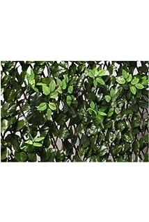 Transparent Catral Deutschland 43040008 Garten 127 x 42 x 3 cm