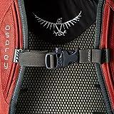 Osprey Reiserucksack Farpoint 40 M/L 2 jasper red -
