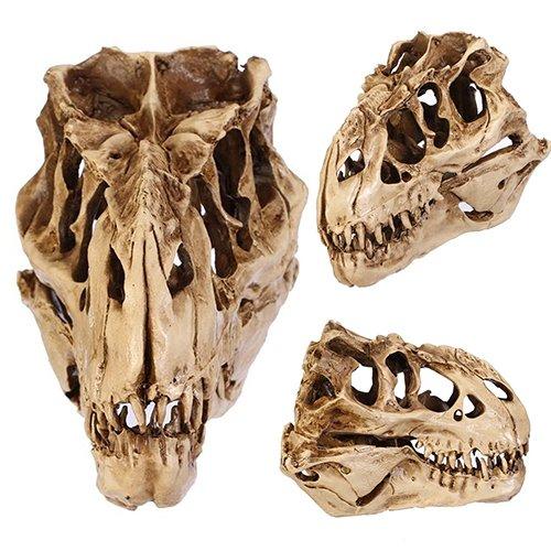 Medusa Bild Kostüm Von - LEUM SHOP Resin Dinosaur Skull Fossil Lehre Skeleton Model Halloween Festival Decor