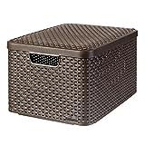 Curver 03619-210-00 Aufbewahrungsbox Style mit Deckel L