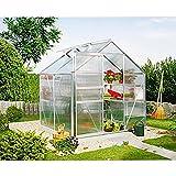 Calypso 3000 Alu-Gewächshaus HKP 6 mm Treibhaus 3,0 m² mit Fundament