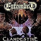 Clandestine [Vinyl LP]