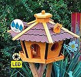 BTV Vogelhaus Massivholz,PREMIUM WETTERFEST, mit Ständer Standfuß und Silo,Futtersilo für Winterfütterung mit Beleuchtung,Licht-LED -Holz Nistkästen & Vogelhäuser- Futterhaus groß ROT mit Ständer rot BRL45roMS