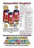 Astaxanthin 4mg Plus 6,98 mg Lycopin hochdosiert 300 Kapseln softgel günstig heidelbeer grüntee omega3 egcg
