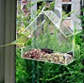 ADEPTNA Window Bird Feeder Acrylic Clear Bird Feeders Hotel Table Seed Peanut Hanging Suction from ADEPTNA