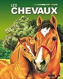 Les chevaux / Jackie Budd | Budd, Jackie. Auteur