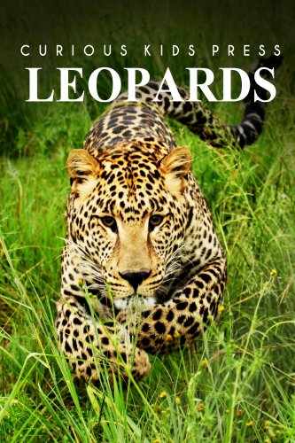 Leopards - Curious Kids Press