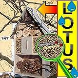 Insektenhotel - NEU MIT SCHMETTERLINGSHAUS, groß 50 cm mit Lotus-Effekt Oberflächen Beschichtung und 2 Sichtgläsern 8 und 11 mm, Beobachtungsröhrchen komplett mit Zellstoff und Füllmaterial für Nistkasten Schmetterling Haus Bienen Wildbienen Unterschlupf, hell grau weiss silbergrau Überwinterung Schmetterlingshaus Nest Insektenhäuschen, zum Hängen und Aufstellen geeignet