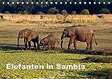 Elefanten in Sambia (Tischkalender 2018 DIN A5 quer): Die Elefanten im South Luangwa National Park können aus nächster Nähe beobachtet und ... ... [Kalender] [Apr 01, 2017] Krause, Johanna - Johanna Krause