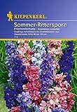 Sommer-Rittersporn Delphinium Prachtmischung von Kiepenkerl