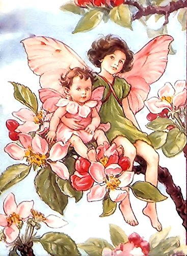 Counted Cross Stitch Pattern: The Apple Blossom Fairy by Cicely Mary Barker, PROFESSIONALLY EDITED Fairies: The Flower Fairies (The Flower Fairy Series) (English Edition) Apple Blossom Pattern