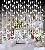 LIQICAI Türvorhang Wulstvorhang DIY Kristall für Hochzeit Party Club Schaufenster Raumteiler - 5 Farben erhältlich (Farbe : Transparent Color, Größe : W 120cm)